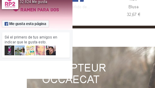 Bloque Facebook Flotante desplegado en Prestashop